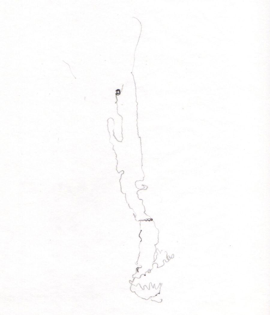 Pencil sketch on paper